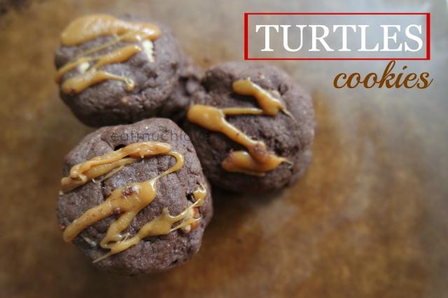 turtles cookies